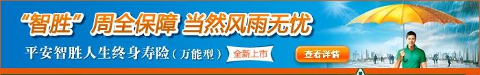平安智胜人生终身寿险(万能型)